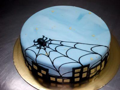 Kolaci Sunce - prigodne torte-31
